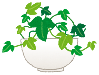 plant_ivy.png